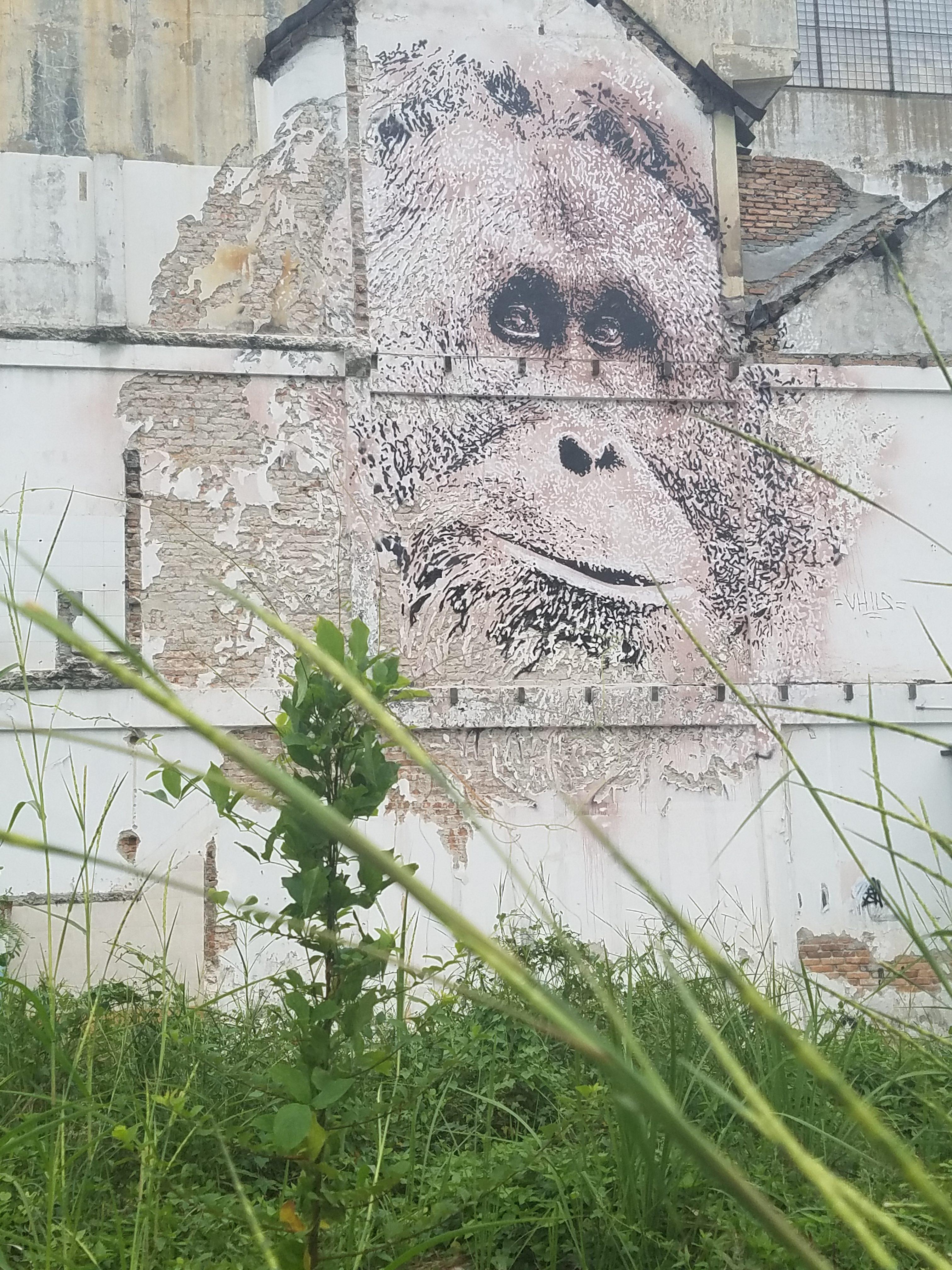 New Mural Art of Orangutan Stole Public Attention