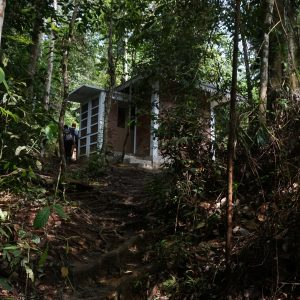 New Toilet Facilities In Bukit Lawang