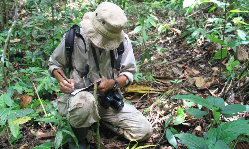 Wildlife Monitoring in Cinta Raja Restoration Site